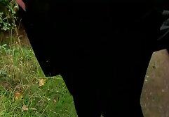 Լատինաամերիկյան աղջիկը ներքնազգեստով քիմիկ Գոգա պոռնո